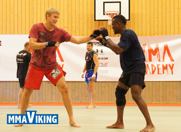 MMA in Sweden | Stockholm Summer Academy