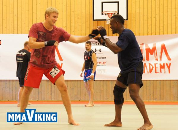 MMA in Sweden | Stockholm Summer Academy