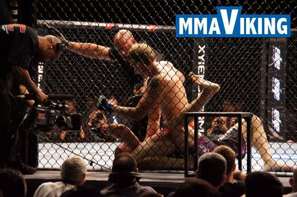 Gustafsson UFC 133