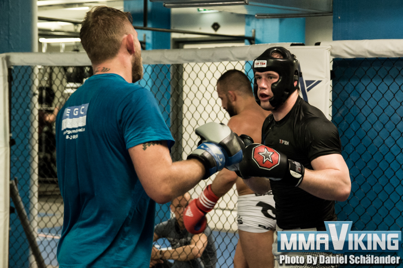 Pesta Sparing with The Mauler