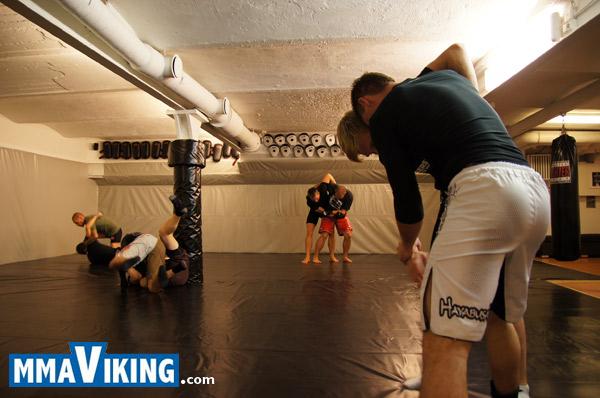 Berserk_MMA_Seminar_Stockholm