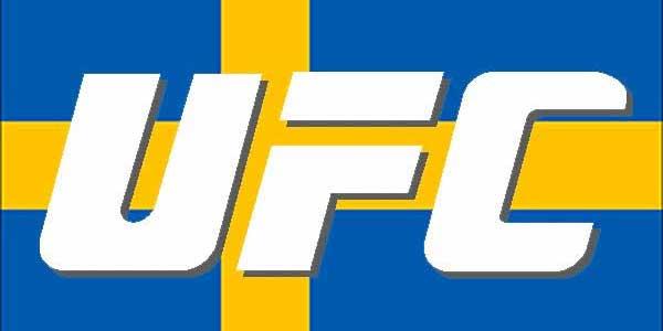UFC in Sweden 2013